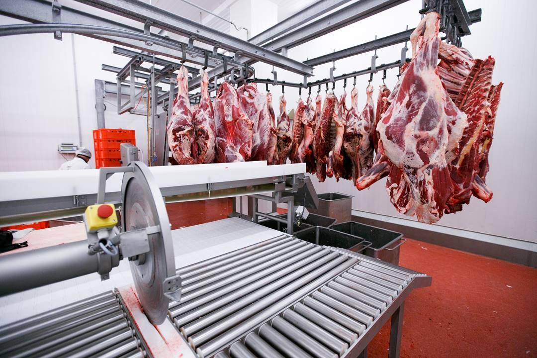 abattoirs traçabilité viande